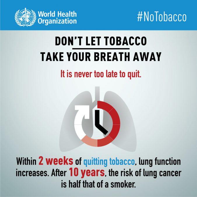 Día mundial sin tabaco, Tabaco y salur pulmonar, Tobacco and lung health, 31 de mayo, 31 may, tobaco world day